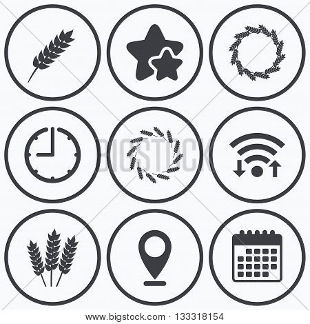 Clock, wifi and stars icons. Agricultural icons. Gluten free or No gluten signs. Wreath of Wheat corn symbol. Calendar symbol.