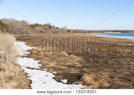 Exposed marsh along Reuben's Point on Allens Pond in Dartmouth Massachusetts