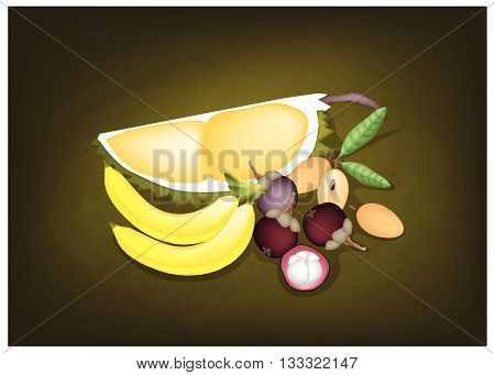 Fruits Illustration of Delicious Mangosteens Banana Durian and Sapodilla on Green Chalkboard.