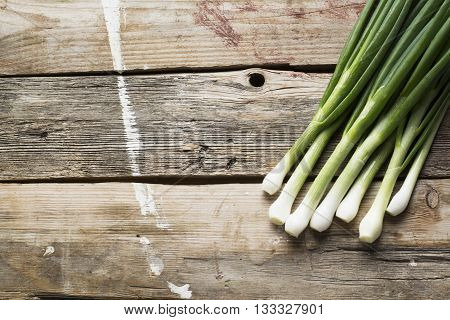A bunch of fresh young green spring onion on a simple wooden background in rustic style. The concept of cooking with seasonal ingredients and organic pitanif. Horizontal. Free space for text