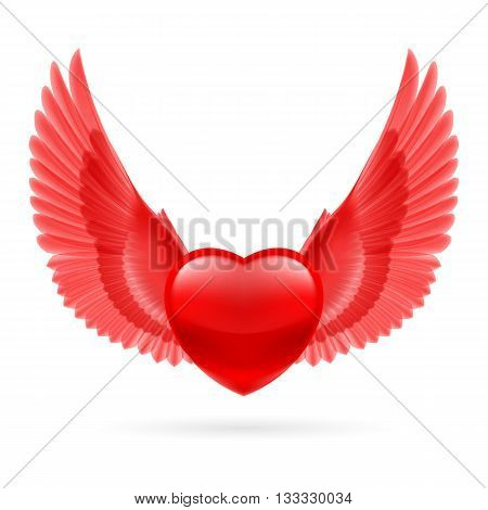 Red heart with bright red raised wings.