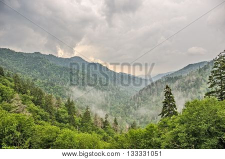 Overcast cloudy and foggy day at Newfound Gap n the Great Smoky Mountains National Park on the border of Tennessee and North Carolina