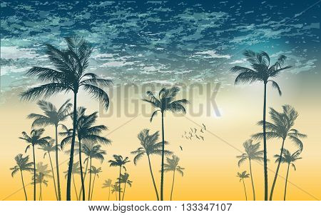 Tropical palm tree silhouette at sunset or moonlight with cloudy sky. Highly detailed and editable