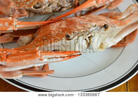 steamed flower crab on the white plate