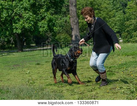 Woman and her best friend rottweiler dog