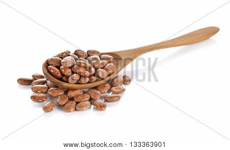 uncooked pinto beans in wooden spoon and on white background