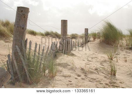 Dunes and sun bleached fence posts on an Irish beach, at Dugort, Ireland.