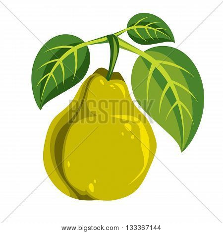 Harvesting Symbol, Vector Fruit Isolated. Single Organic Sweet Pear With Green Leaves, Healthy Food