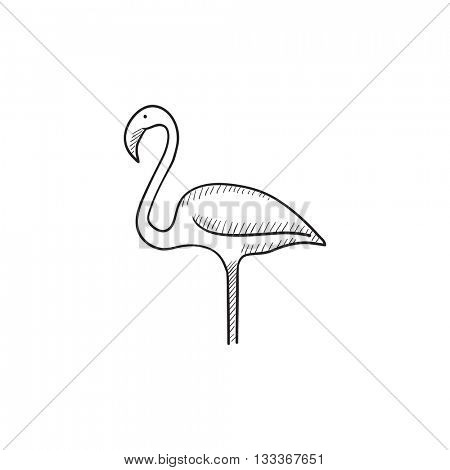 Flamingo vector sketch icon isolated on background. Hand drawn Flamingo icon. Flamingo sketch icon for infographic, website or app.