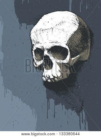 Black and white human skull. Hand drawn illustration
