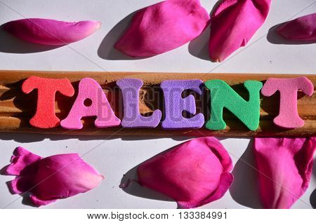 talent word  on a abstract colorful  background