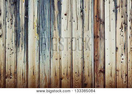 Vintage light beige cold wooden background. Multicolored old boards. Wooden background. Wooden texture.