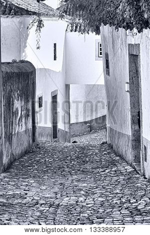 Street in the Medieval Portuguese City of Obidos Retro Image Filtered Style