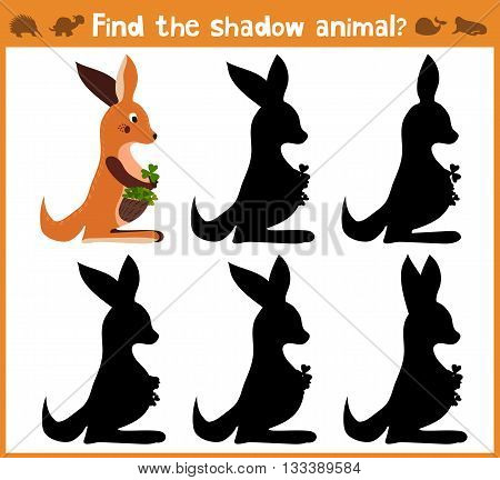 Cartoon vector illustration of education will find appropriate shadow silhouette animal kangaroo. Matching game for children of preschool age. Vector illustration