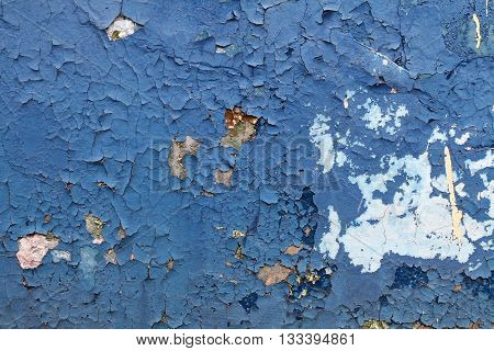 Old blue paint with cracks on the wall