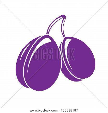 Two purple simple vector plums ripe sweet fruits illustration. Healthy and organic food harvest season symbol.