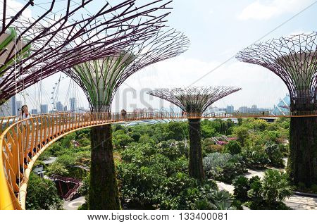 SINGAPORE-JUN 07 2016: Day view of The Supertree Grove at Gardens by the Bay in Singapore. Spanning 101 hectares and five-minute walk from Bayfront MRT Station.