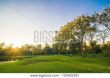 Sunset In The Beautiful Park With Pond Nature