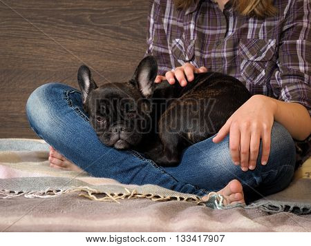 Dog and girl on the bed. Girl and dog look at each other. Legs in jeans, barefoot. Black dog, french bulldog puppy. Ideas concept - Dogs Trust to the person. Comfort, rest with the dog