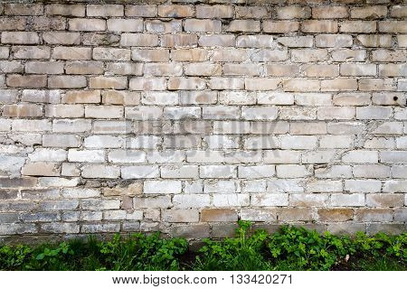 Old white brick wall with green grass