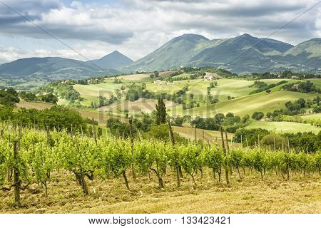 An image of a nice view in Italy Marche near Camerino