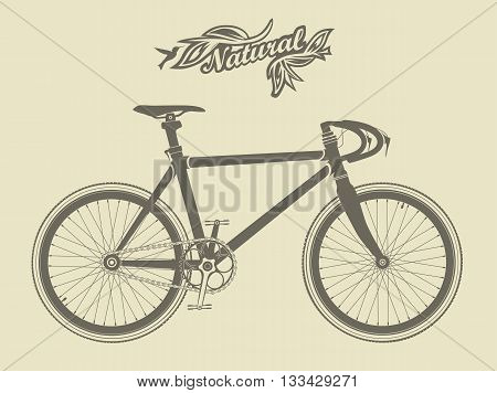Illustration of a vintage sport bike, with a bird and the inscription