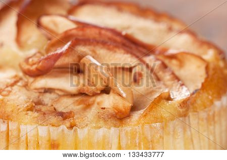 Small charlotte pie with apples close up shot