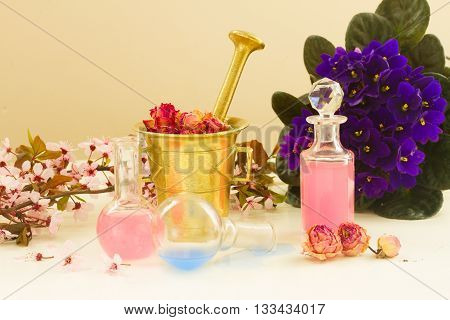 Dry flowers, mortar and glass bottles of potions, herbal medicine