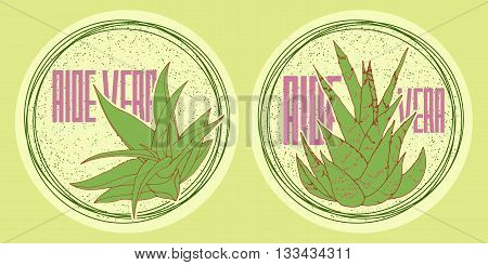 Round stickers set of hand drawn aloe vera in bright colors for organic design of healthy products like shampoo cream or body lotion.