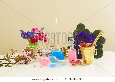 Dry and fresh flowers and glass vials of tincture or oil, aromatherapy and herbal medicine concept