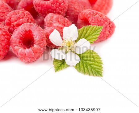 Fresh Raspberries with a flower and a leaf, on white