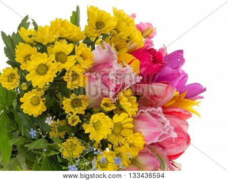 beautiful colorful bouquet of bright colorful fringed tulips forget-me-blue and yellow chrysanthemums on a white background isolated