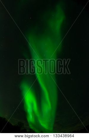 An aurora while twisting over the sky forms a vertical band.