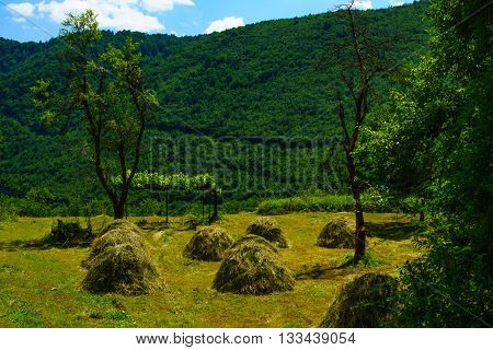 Countryside And Haystacks In The Piva Valley