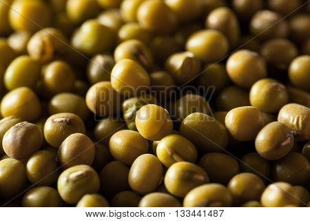 Raw Organic Green Mung Beans