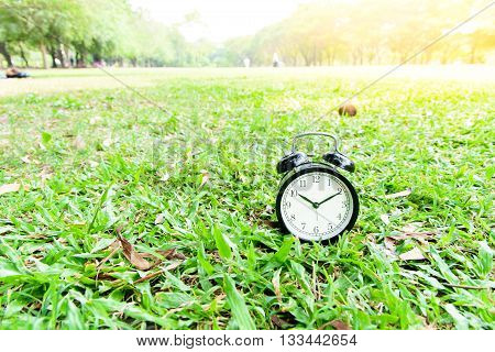 Black Alarm Clock On The Lawn