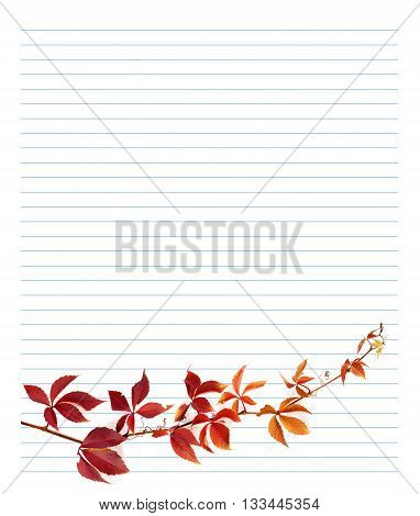Red Branch Of Grapes Leaves On Notebook Paper
