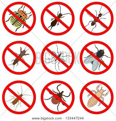 Pest and insect control, icons set. Tick and cricket, bug and ant, fly and cockroach, colorado beetle and mosquito, vector illustration