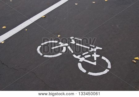 road markings for bicycle on the road