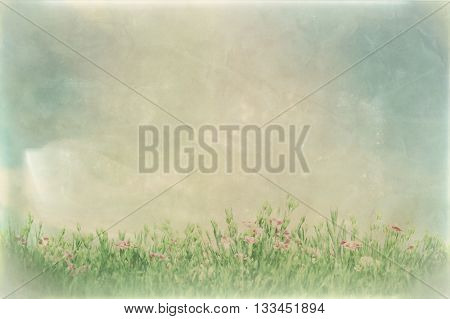 Vintage picture of summer meadow flowers in green grass. Nature background with copy-space