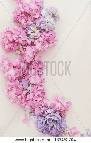 Hydrangeas. Abstract floral background with different soft natura hydrangeas. Top view, vintage toned image, blank space