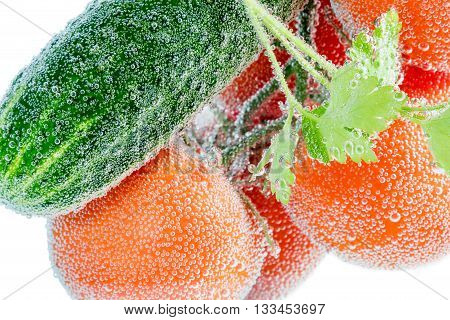 Green cucumber and red tomatoes on a branch wrapped in bubbles close-up isolated on white background