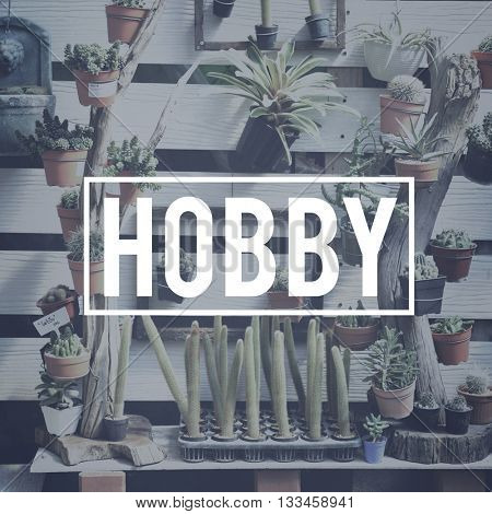 Hobby Leisure Houseplant Cactus COncept