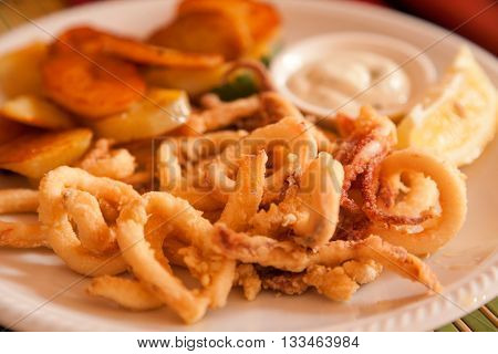 Portion of fried squid (or calamari). Greek style.