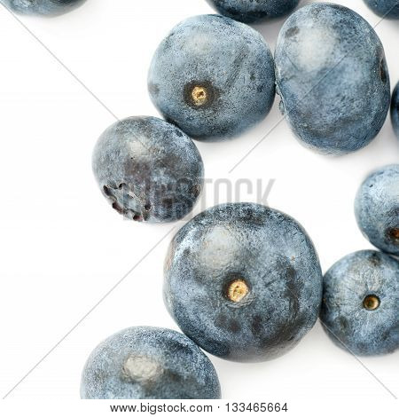 Ripe bilberry or blueberry over white background