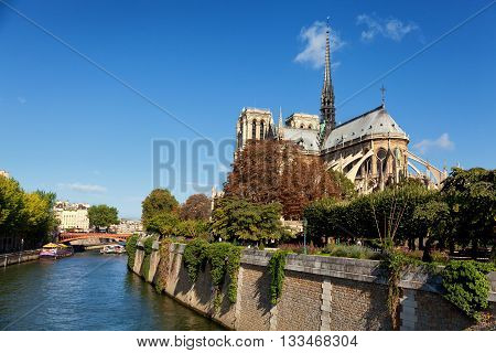 Notre Dame from Square du Jean XXIII Paris. Wide shot with river on the side. Horizontal view.