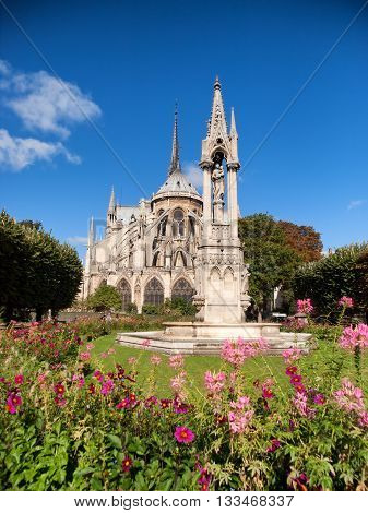 Notre Dame from Square du Jean XXIII Paris. Wide angle shot with flowers on foreground