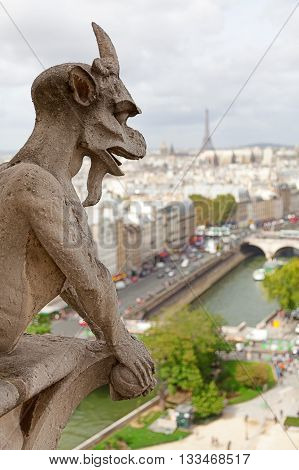 Gargoyle of Notre Dame in Paris. River and Eiffel tower on background