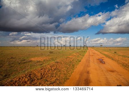 African Road With Clouds