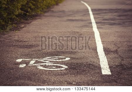 Symbol Of Bicycle Lane Drawn On The Asphalt